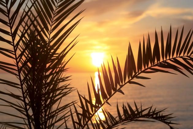 Den Sonnenuntergang am Strand erleben