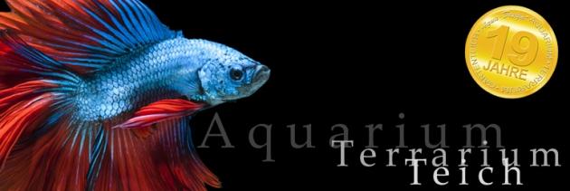 Produkte für Dein Aquarium gibt es bei Aqua-Design