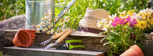 Gartenglück per Versand - Bakker Holland