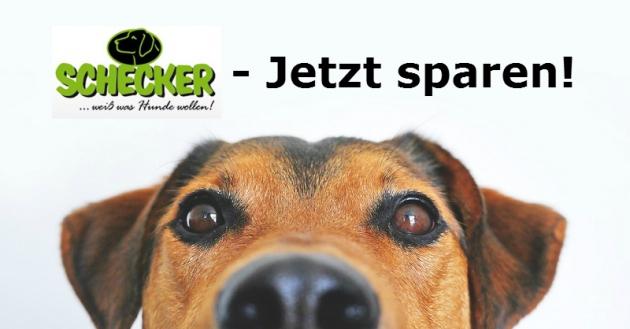 Mit Produkten von Schecker kannst Du Deinem Hund eine Freude machen