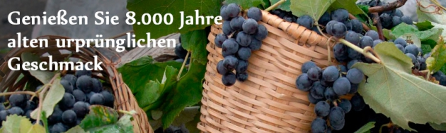 Weingut Georgien bei Couponster.de
