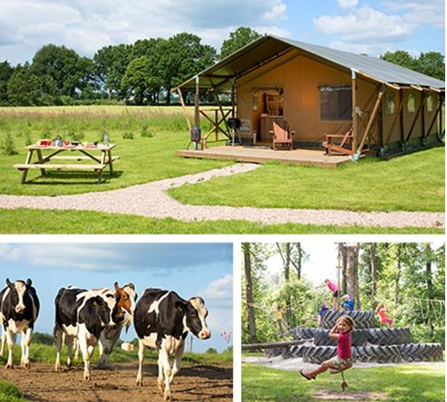 Farmcamps bei Couponster.de