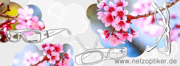 Brillen, Kontaktlinsen, Sonnenbrillen und mehr gibt es bei netzoptiker