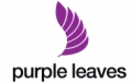 Shop purple leaves